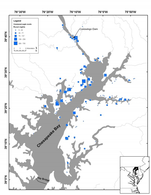 Map of communal roosts delineated with satellite data within the upper Chesapeake Bay Bald Eagle Concentration Area
