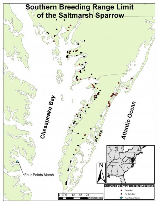 Map of recent marsh-bird surveys completed by the Center for Conservation Biology 2010