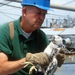 Mitchell Byrd holding a peregrine falcon chick from a nest on a retired naval ship