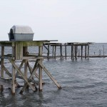 Elkins peregrine shack at high tide