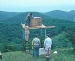 Cole Mountain Hack Site