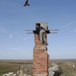8_Libby Mojica climbs the ruins of an oyster shack chimney to monitor a nest box on the Eastern Shore of Virginia.