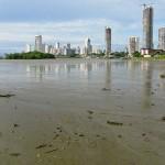 Mudflats around Panama City