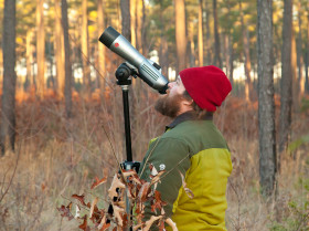 Fletcher Smith searches for foraging woodpeckers in the crowns of loblolly pines. Birds often forage rapidly through the crowns challenging observers to sort out birds and read their color bands. Photo by Bryan Watts.