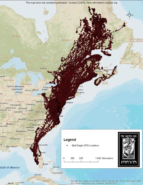 Map of bald eagle locations. Map by CCB.