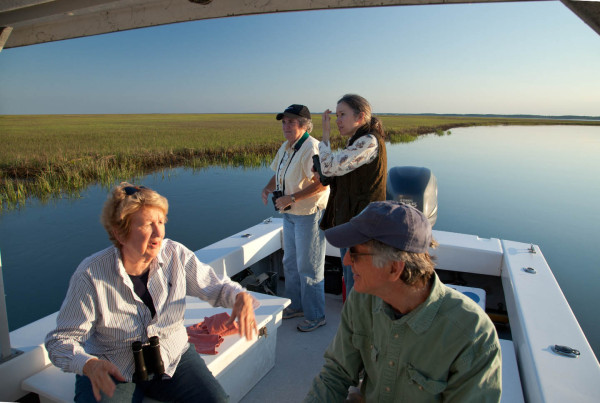 Jane Batten, Talbot Jordan, Roberta Kellam, and Polk Kellam (L to R) talk shorebirds along the edge of Elkins Marsh near Box Tree. Photo by Bryan Watts.