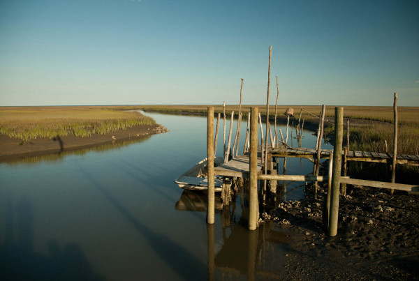 View to the south from Box Tree dock along the lower Delmarva Peninsula. Photo by Bryan Watts.