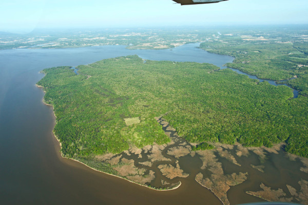 Aerial view of Mason Neck National Wildlife Refuge in spring that now provides an extensive buffer around High Point on the southeast corner (upper left) where Occoquan Creek enters the Potomac. Photo by Bryan Watts.