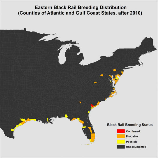 Map of counties with recent (2011-2016) credible records of eastern black rails during the breeding period (1 April through 31 August). Data from CCB.