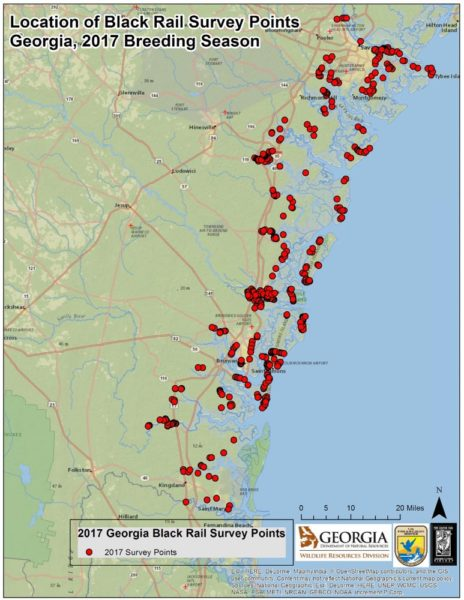 The Center For Conservation Biology No Good News For Eastern - Map of georgia coast